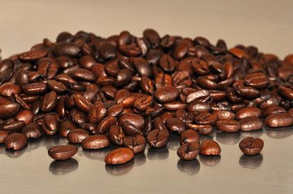 פולי קפה קפה רובוסטה