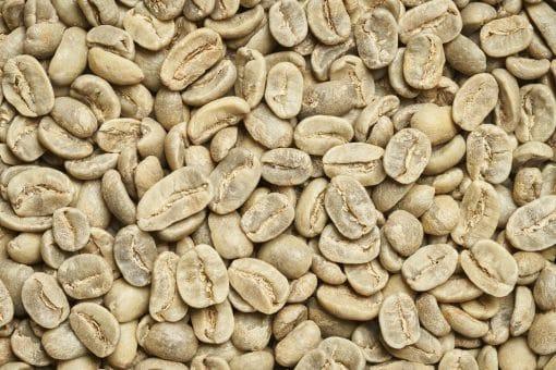 קפה ירוק מינוטו - פרסטיז'