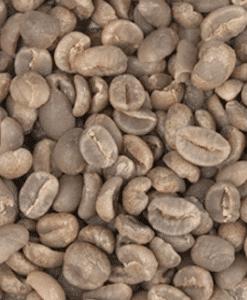 קפה ירוק ברזיל Fazenda Sertão חד זני – Specialty Coffee Fazenda Sertão
